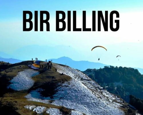 bir-billing